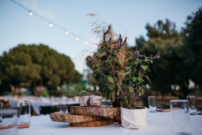 Plants on a table at a wedding at mataim